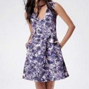 Rw&co Fit and flare purple floral dress